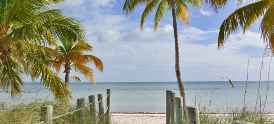Win a holiday for two to The Palm Beaches, Florida