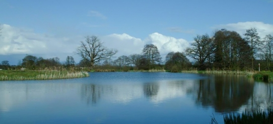 Shropshire: 2- or 3-Night Self-Catering Cottage Stay for Two or Four at Netley Hall Estate