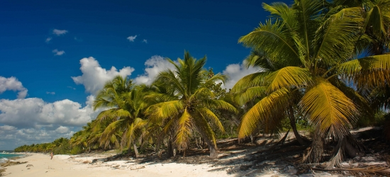Win a holiday for two in the Dominican Republic - worth £6000