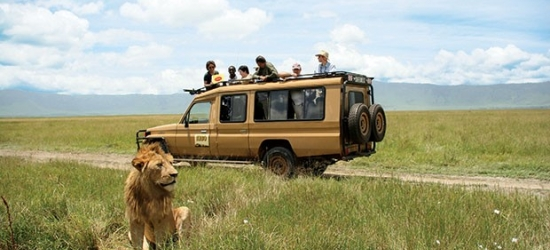 Win a safari holiday in Zimbabwe for two