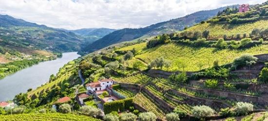 7-nt Douro escape inc excursions & river cruise
