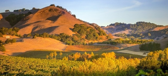 £100-£146 -- Napa Valley Stay incl. Weekends, 55% Off
