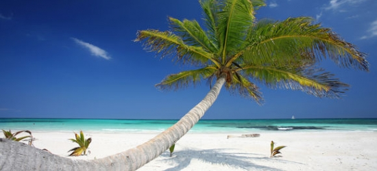 Mexico - All Inclusive Five Star Oasis  at the Breathless Riviera Cancun Resort & Spa 5*