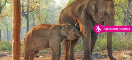 14-Day Nepal Trek, Jungle Safari, Rafting & Yoga