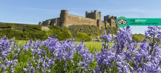Northumberland Escape, Breakfast, Wine & Late Check Out for 2