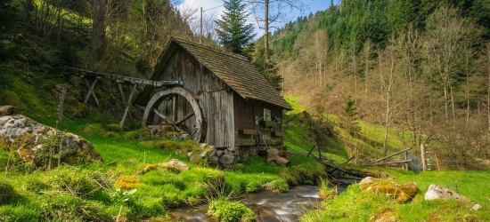 Win a culinary trip for two to Germany's Black Forest