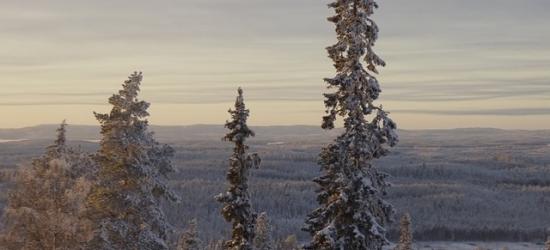 £88 per night | Hotel Arctic Zone, Kuusamo, Finland
