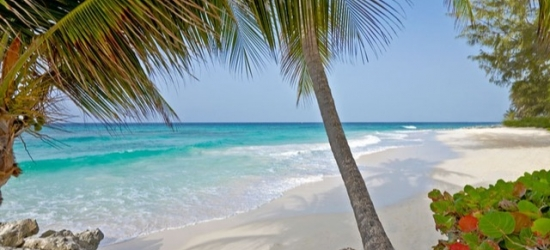 Luxury all-inclusive Barbados beach holiday with an optional oceanfront suite, Turtle Beach by Elegant Hotels, Christ Church