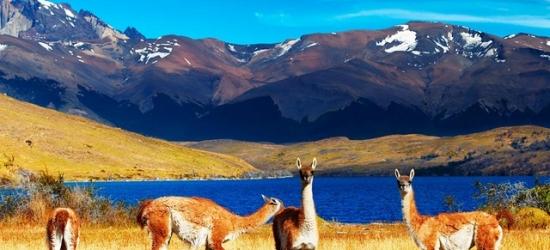 Ultimate Andes & Patagonia tour of Chile, Santiago, San Pedro de Atacama, Puerto Varas & Puerto Natales
