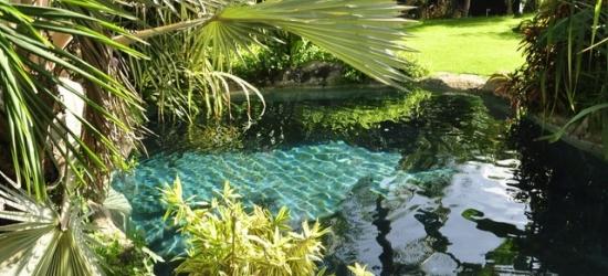 £175 per night | Sweetfield Manor, Barbados, Caribbean