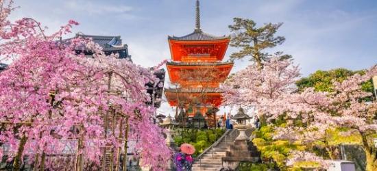 Japan / Tokyo, Kyoto & Kinosaki - Glittering Cities, Enchanting Landscapes & Spiritual Gems at the Zen Japan Discovery Tour