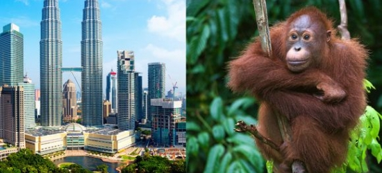 Malaysia / Tour - Discover Malaysia's Sublime Scenery and Stunning Cities at the Malaysia Escapade with Optional Langawi Extension