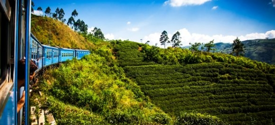 Sri Lanka / Tour  - Wellbeing, Culture & Beach Bliss  at the Private Sri Lanka Tour