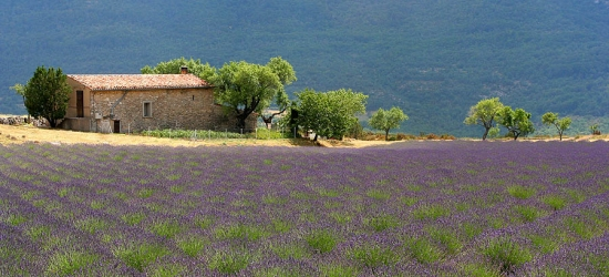 Win a trip for two to Provence, including Eurostar travel