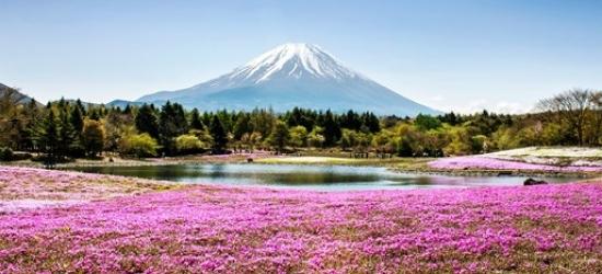 Japan tour sale inc free Hong Kong city break