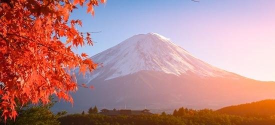 Extraordinary Japan journey with rail passes - Visit Tokyo, Kanazawa, Kyoto, Osaka & Hiroshima - save over 35%