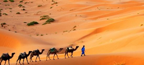 Magical Morocco city, Sahara desert & Atlas Mountains trek