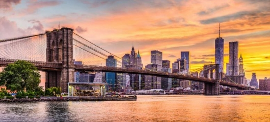 New York City Getaway  - Manhattan or Brooklyn!