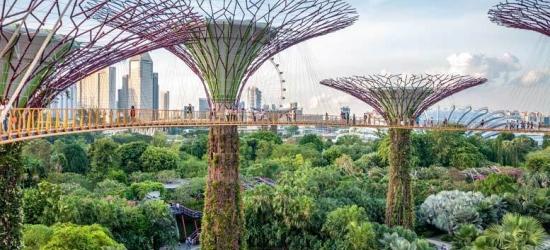 14nt Thailand & Singapore Fly Cruise - Full Board Royal Caribbean!