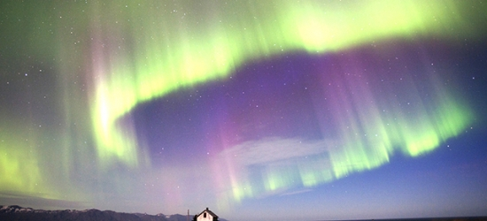 Mesmerising Iceland Northern Lights trip with epic experiences, CenterHotel Plaza, Reykjavik