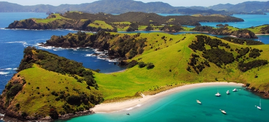 Auckland to Wellington tour inc Bay of Islands, save 25%
