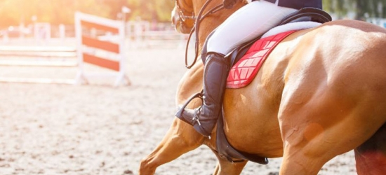 4* Central London Getaway, Breakfast & Olympia Horse Show Ticket