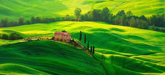 Tresures of Tuscany tour