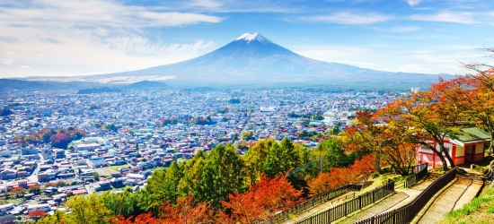 12-nt Japan cruise & Shanghai stay