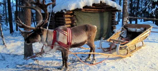 Win a festive family trip to Lapland worth £4000
