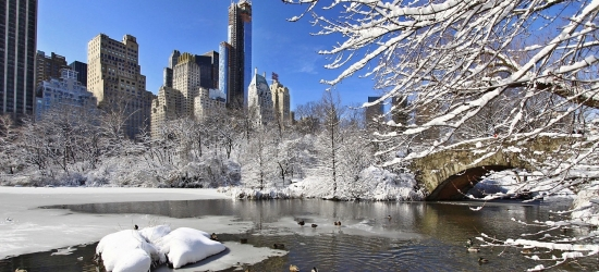 Win a Frozen 2 inspired family trip to New York