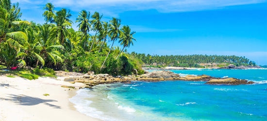 4* deluxe Sri Lanka holiday