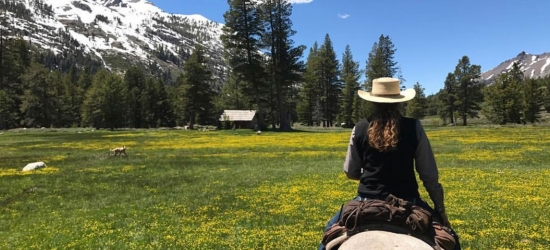 Win a holiday for two in California's Yosemite Tuolumne County