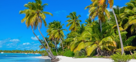 Miami-to-Los Angeles cruise w/Caribbean, Panama Canal & flts
