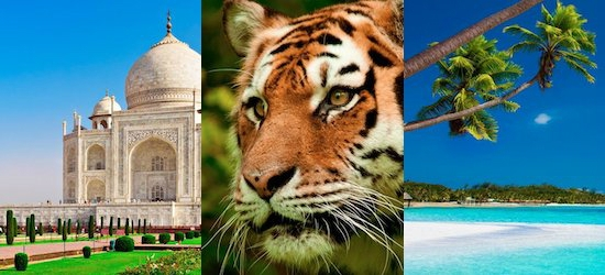 India & Maldives: Taj Mahal, Tiger Safari & all-inclusive escape