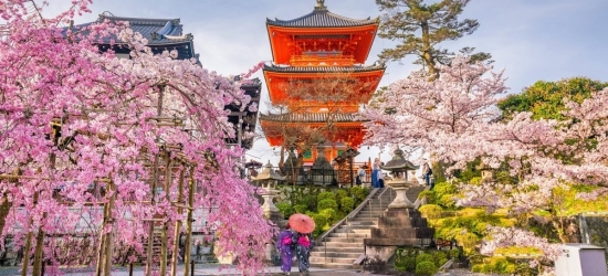Win a family holiday to Japan