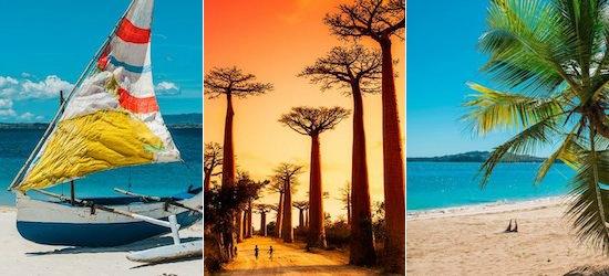Madagascar: Land of the Baobabs