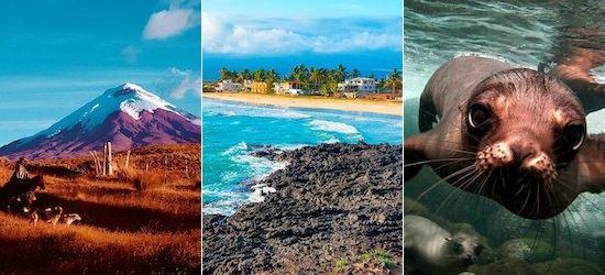 Ecuador: Cities, Andes & Galapagos