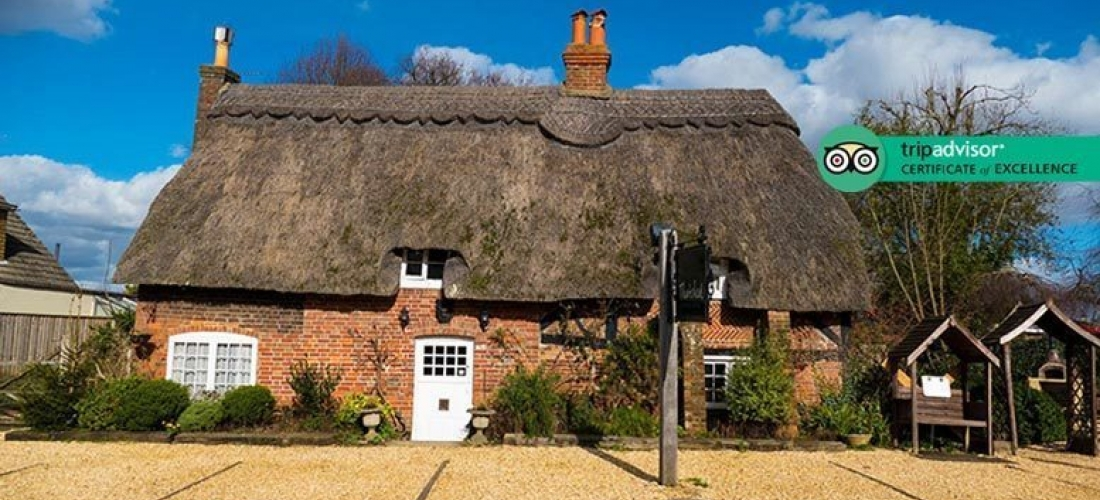 New Forest Escape, Gin-Tasting & Breakfast for 2 - 1-2nts!
