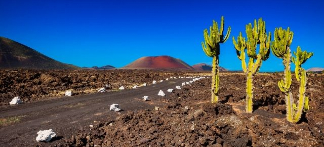 Volcanic Lanzarote with car hire