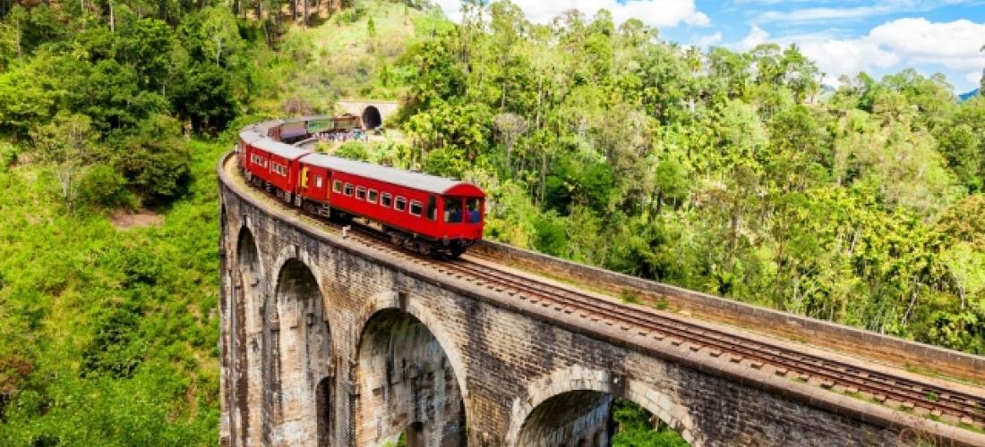 Experience the highlights of Sri Lanka