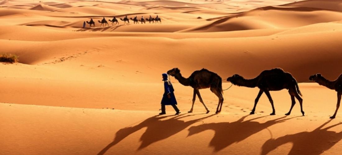 Marrakech & the Sahara Desert, Marrakech, Dades, Sahara and Merzouga, Morocco